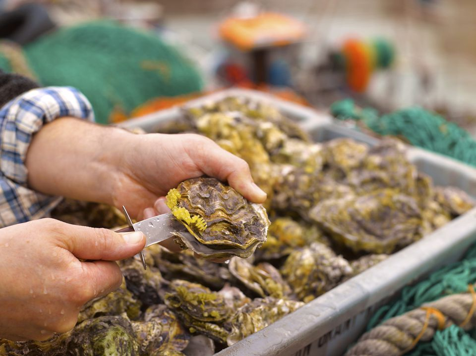 How to Eat Oysters Right
